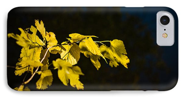 IPhone Case featuring the photograph Yellow Leaves by Randy Bayne