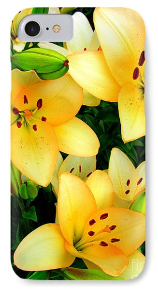 Yellow Lilies 3 IPhone Case by Randall Weidner