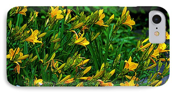 IPhone Case featuring the photograph Yellow Lily Flowers by Susanne Van Hulst