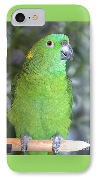IPhone Case featuring the photograph Yellow-naped Amazon by Debbie Stahre