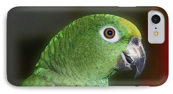 IPhone Case featuring the photograph Yellow Naped Amazon Parrot by Smilin Eyes  Treasures