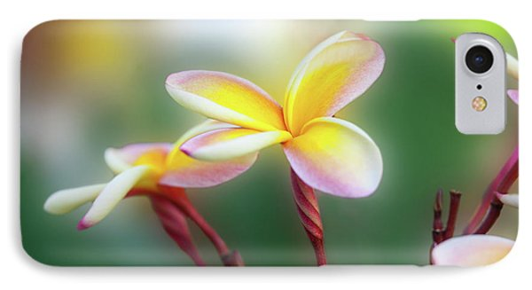 Yellow Pastel Plumeria IPhone Case