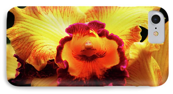 IPhone Case featuring the photograph Yellow-purple Orchid by Anthony Jones