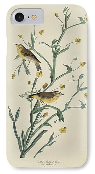 Yellow Red-poll Warbler IPhone 7 Case