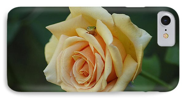 Yellow Rose And Frog IPhone Case