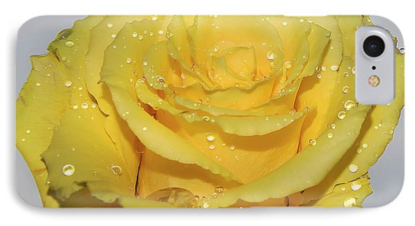 IPhone Case featuring the photograph Yellow Rose by Elvira Ladocki