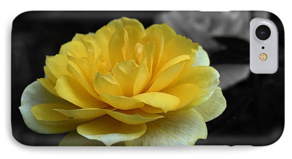 Yellow Rose In Bloom IPhone Case by Smilin Eyes  Treasures