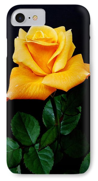 Yellow Rose IPhone Case by Michael Peychich