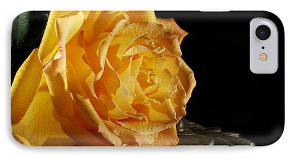 Yellow Rose IPhone Case by Robert Och