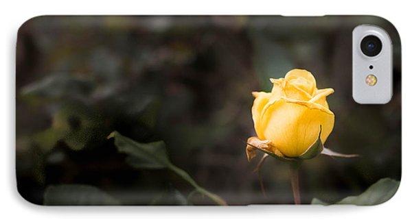 Yellow Rose IPhone Case