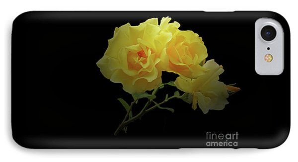 Yellow Roses On Black IPhone Case