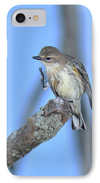 Yellow-rumped Warbler Itch IPhone Case