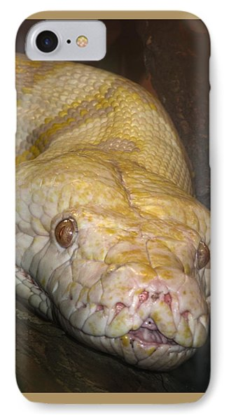 Yellow Snake IPhone Case