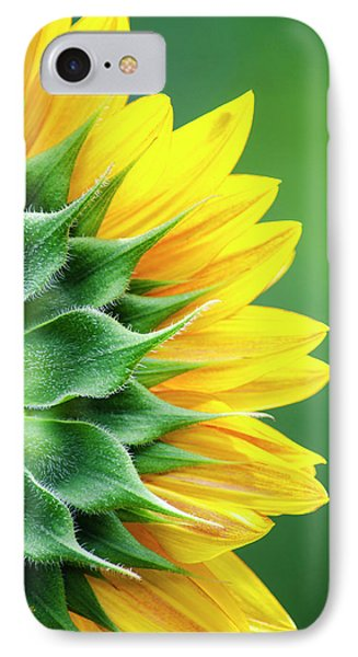 Yellow Sunflower IPhone 7 Case by Christina Rollo