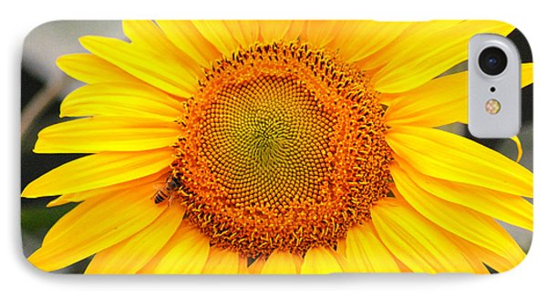 Yellow Sunflower With Bee Phone Case by Amy Fose