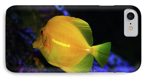 IPhone Case featuring the photograph Yellow Tang by Anthony Jones