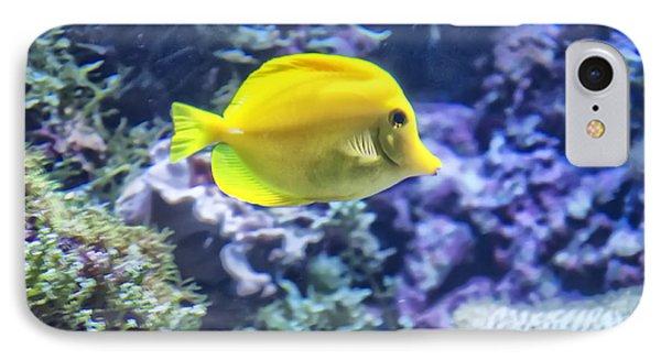 Yellow Tang IPhone Case