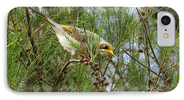 Yellow Throated Miner 2 IPhone Case by Evie Hanlon