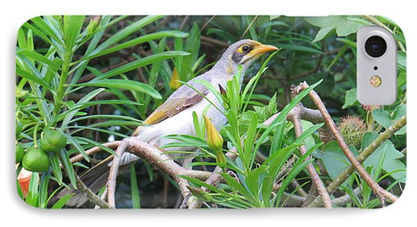 Yellow Throated Miner IPhone Case by Evie Hanlon