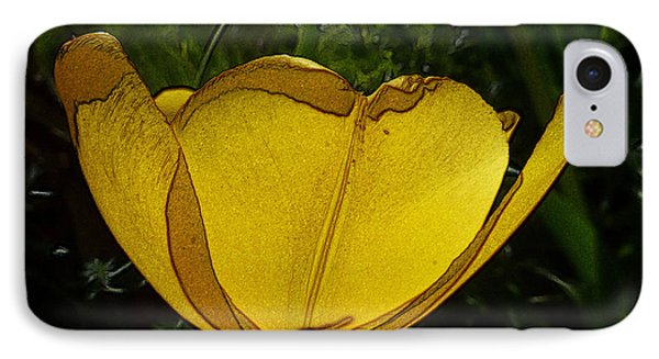 Yellow Tulip 2 IPhone Case by Jean Bernard Roussilhe