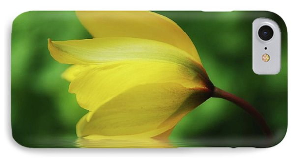 Yellow Tulip IPhone Case by Elaine Manley