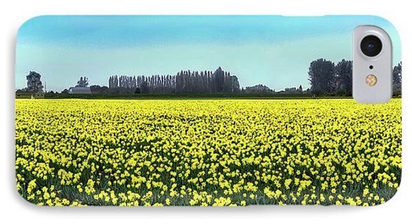 Yellow Tulip Fields IPhone Case by David Patterson