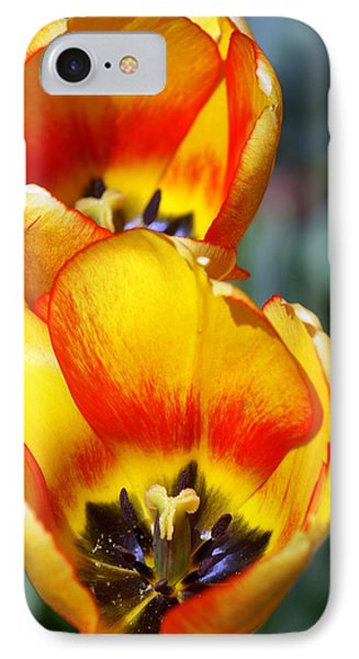 Yellow Tulip Phone Case by Marty Koch