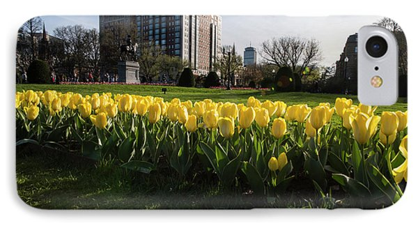 Yellow Tulips On The Boston Public Garden Boston Ma IPhone Case by Toby McGuire