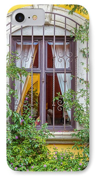 Yellow Wall With Window And Greenery IPhone Case by Douglas J Fisher