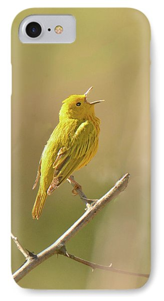 Yellow Warbler Song IPhone Case