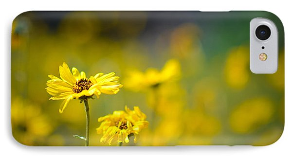 IPhone Case featuring the photograph Yellow Wild Flowers by Kelly Wade