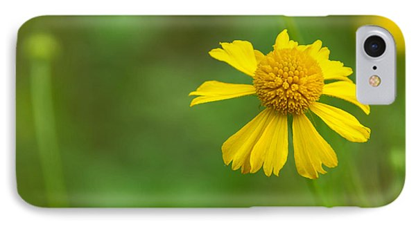 Yellow Wildflower IPhone Case by Christopher L Thomley