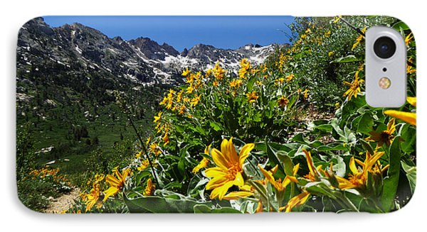 Yellow Wildflowers IPhone Case by Alan Socolik