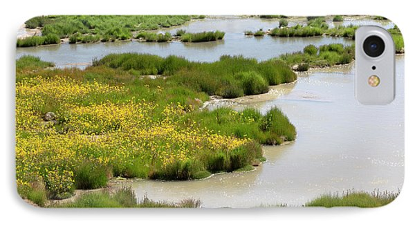Yellow Wildflowers At Mud Volcano Area In Yellowstone National Park Phone Case by Louise Heusinkveld