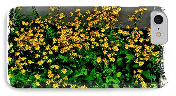 Yellow Wildflowers IPhone Case by Marsha Heiken