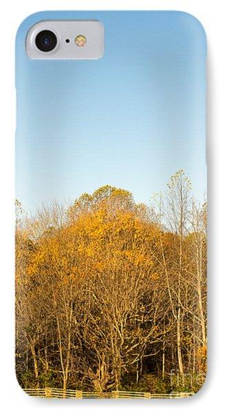 Yellow Yellow Everywhere - Natchez Trace IPhone Case