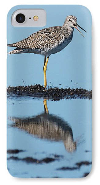 Yellowlegs Song IPhone Case by Dawn Currie