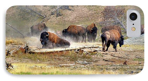 Yellowstone Buffalo- Fine Art Photograph IPhone Case
