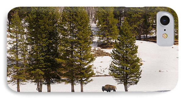 Yellowstone Buffalo IPhone Case