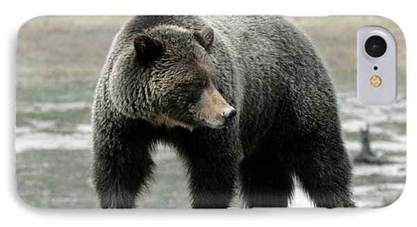IPhone Case featuring the photograph Yellowstone Grizzly A Pondering by Bruce Gourley