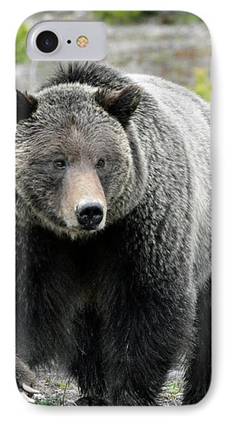 IPhone Case featuring the photograph Yellowstone Grizzly With Claws by Bruce Gourley