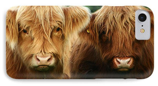 Yeti Cows  IPhone Case by Angel  Tarantella
