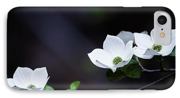 Yosemite Dogwoods IPhone Case