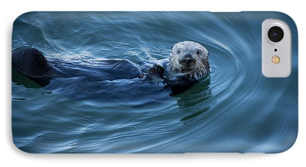 IPhone Case featuring the photograph You Otter Take My Picture, Lady by Lora Lee Chapman