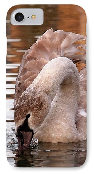 Young Beauty - Juvenile Mute Swan IPhone Case by Gill Billington