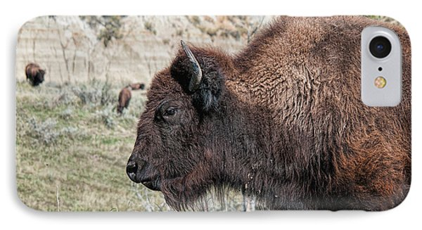 Young Bison IPhone Case