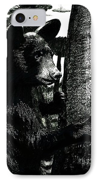 Young Black Bear In Tree  IPhone Case