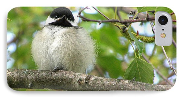 IPhone Case featuring the photograph Young Black-capped Chickadee by Angie Rea