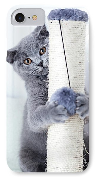 Young Cute Cat Scratching His Claws On A Scratcher. IPhone Case