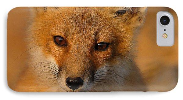 Young Fox Phone Case by William Jobes